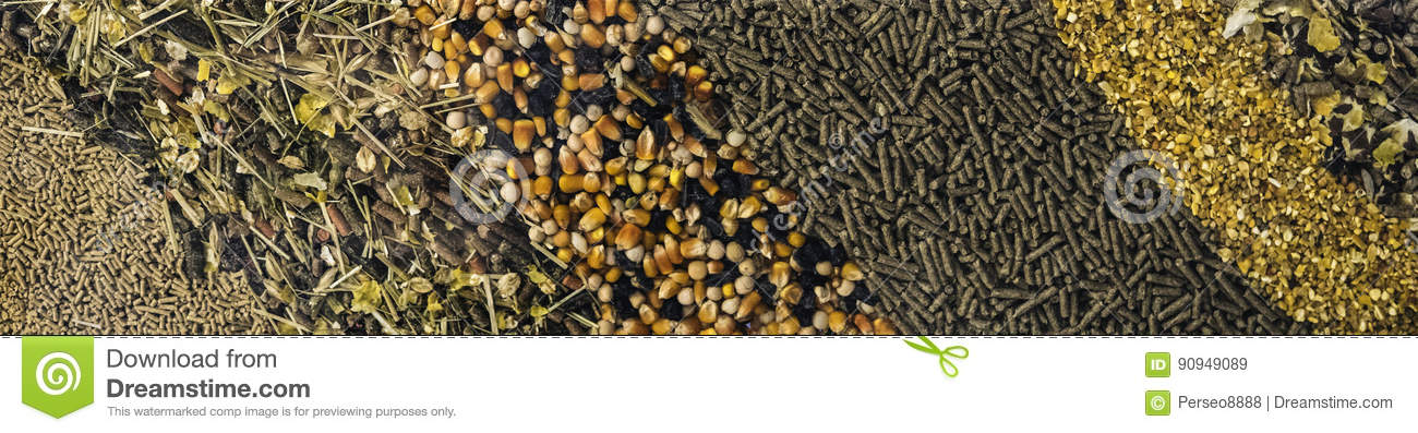 Different types of animal feed for background