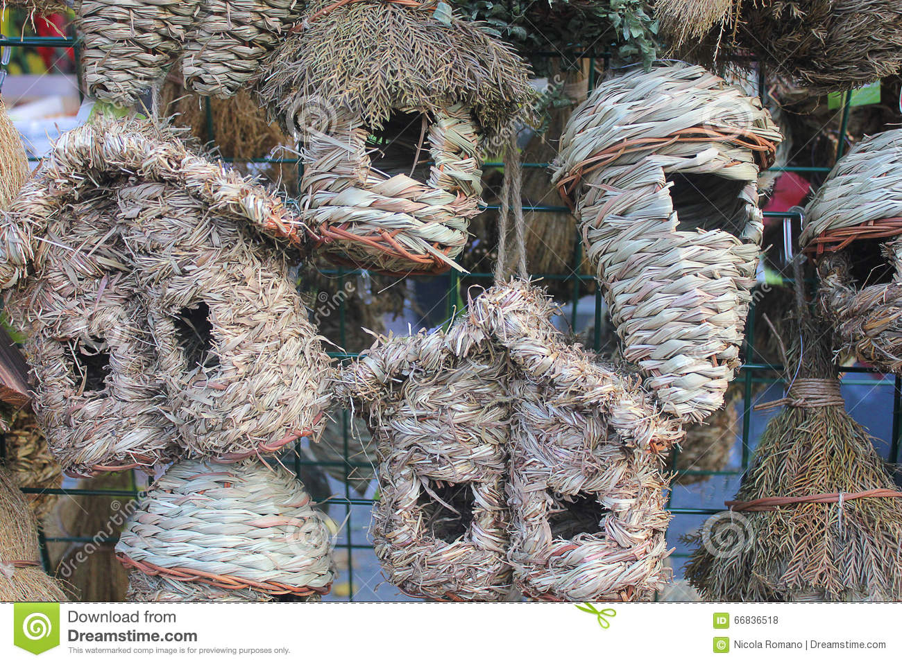 different types of bird nests stock photo image 66836518