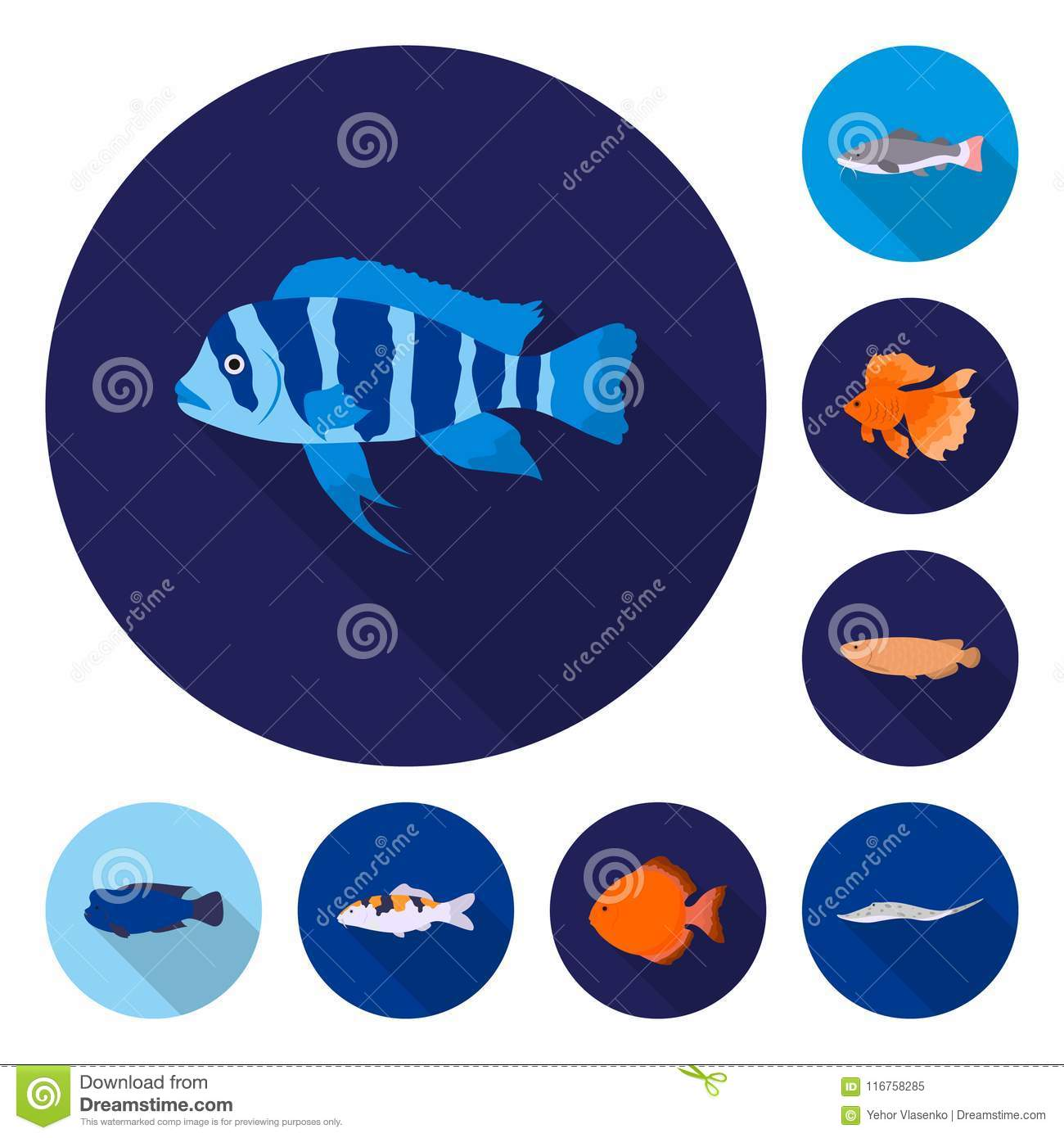 Different Types Of Fish Flat Icons In Set Collection For Design