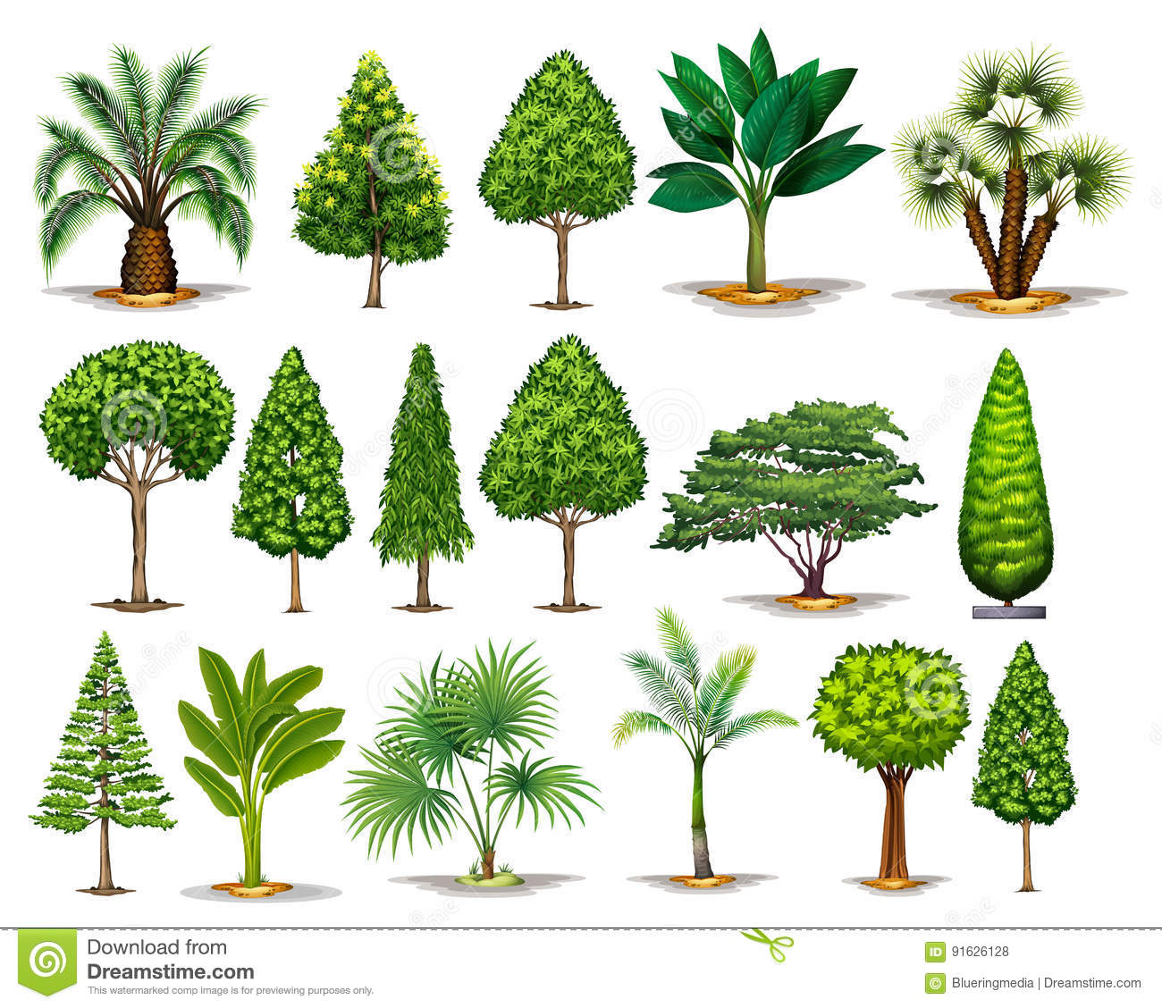 how to draw different types of trees