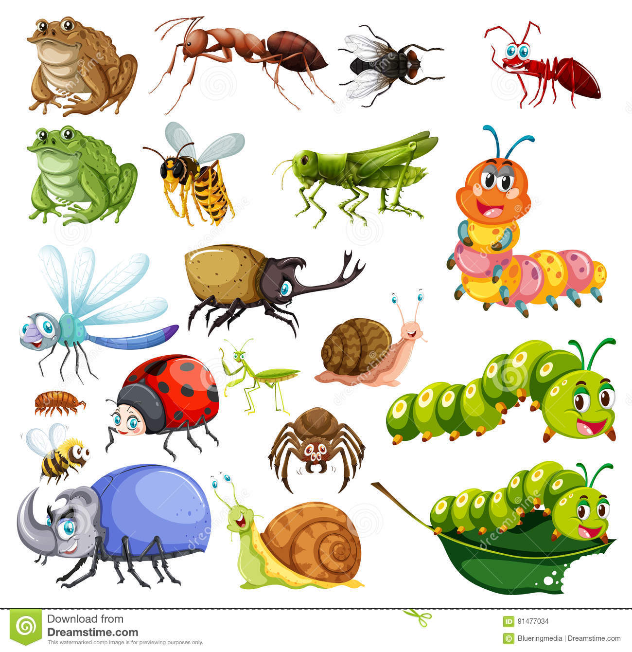 Different Types Of Insects Stock Vector - Image: 91477034