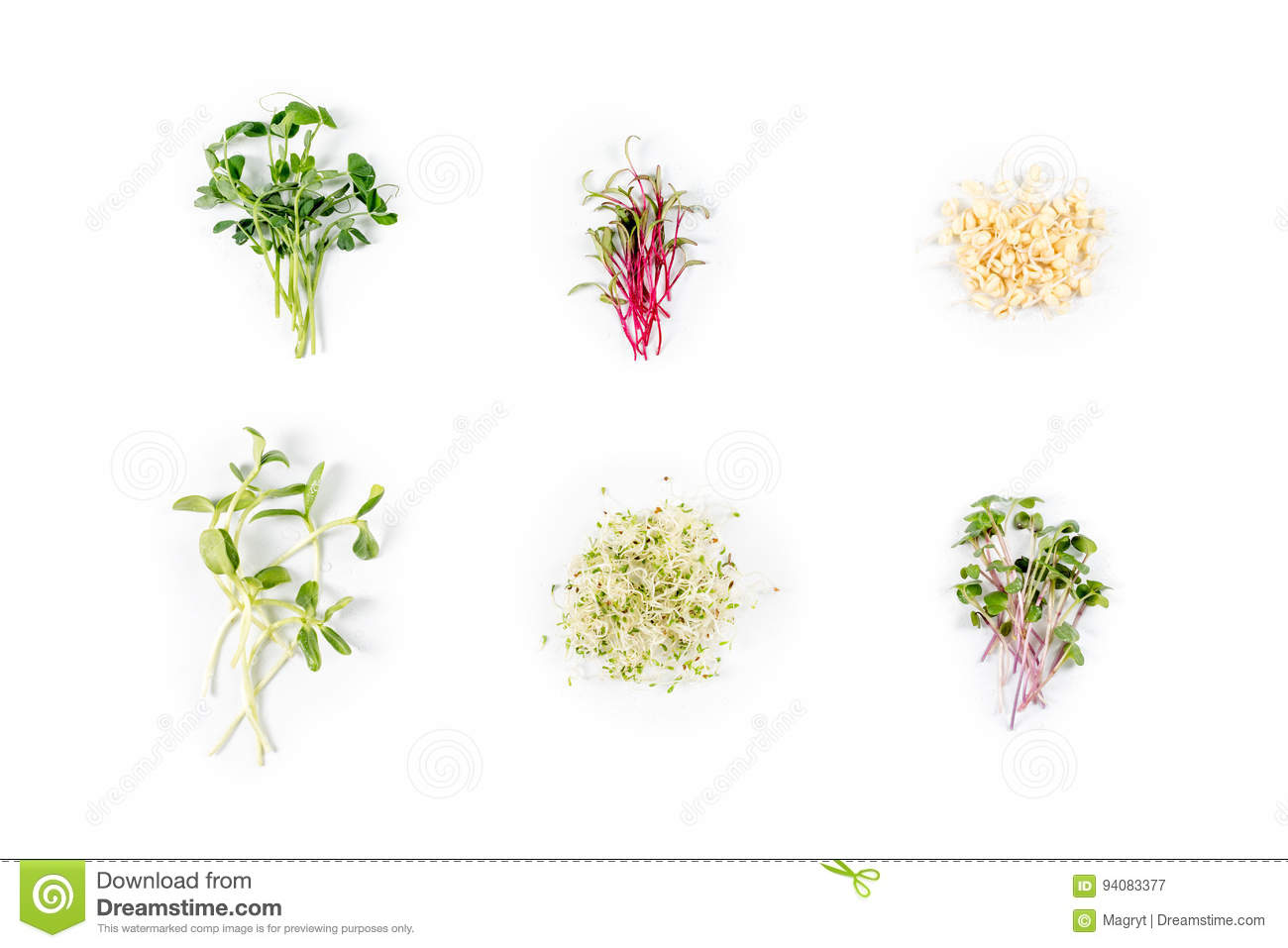 Different Types Of Micro Greens On White Background Healthy Eating
