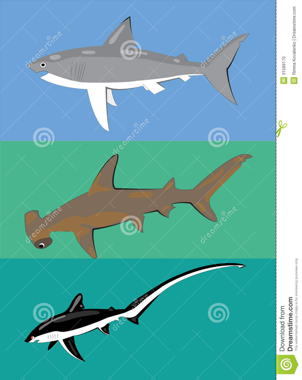 Different types of sharks. stock vector. Image of black ...