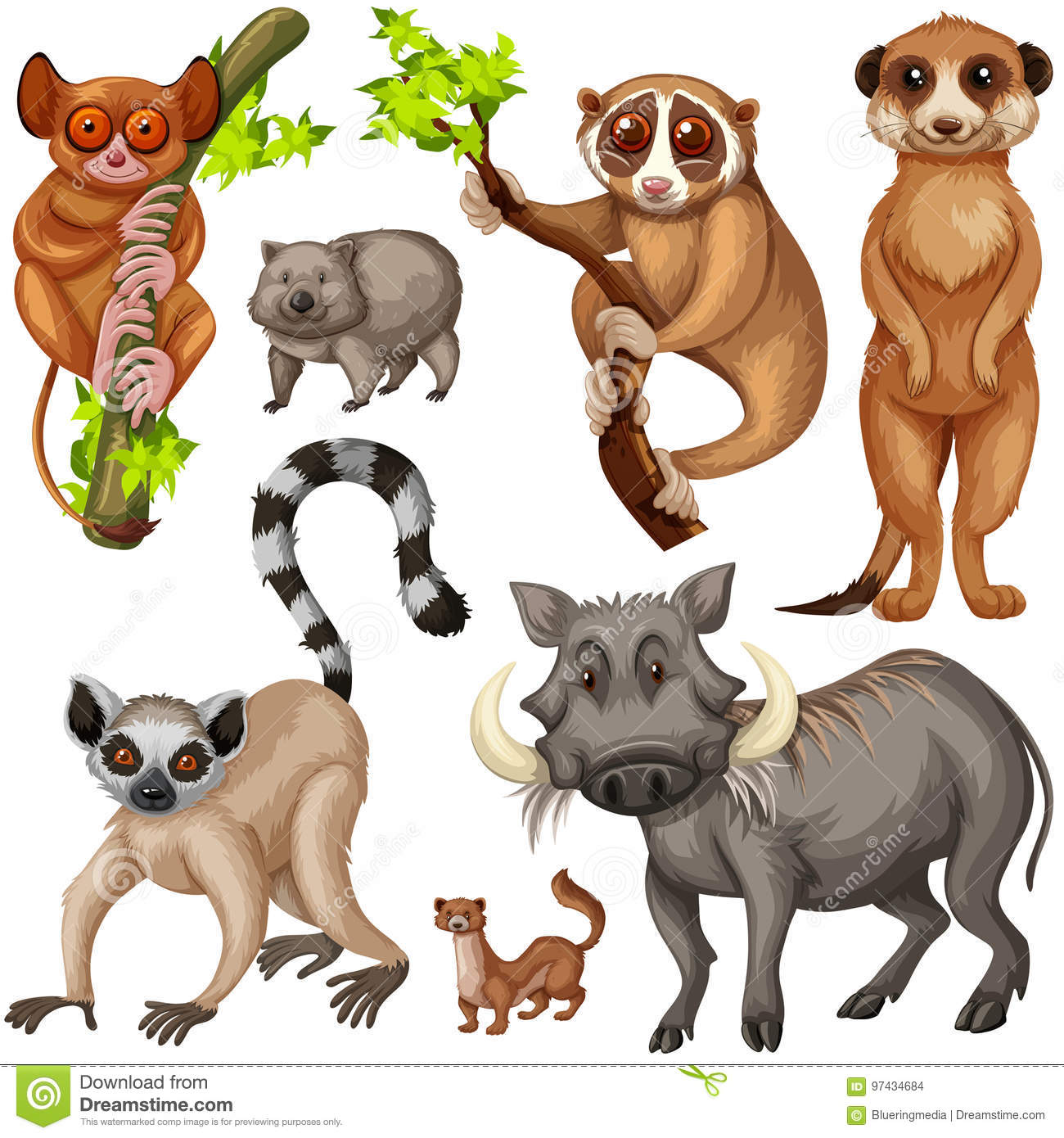 Different Types Of Wild Animals On White Background Stock Vector ...