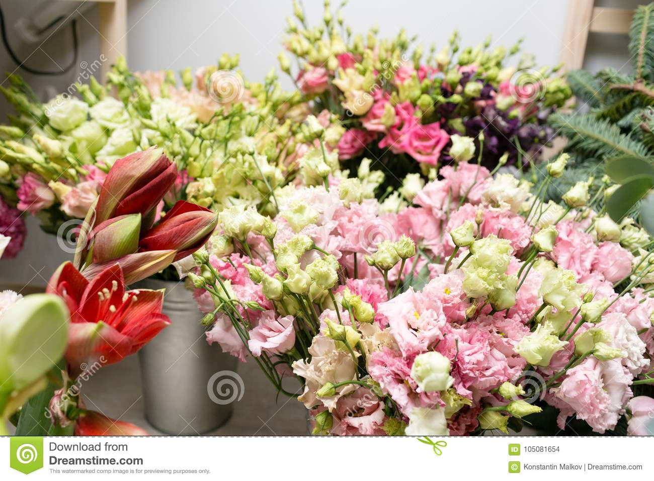 Different varieties fresh spring flowers in refrigerator for download different varieties fresh spring flowers in refrigerator for flowers in flower shop bouquets mightylinksfo