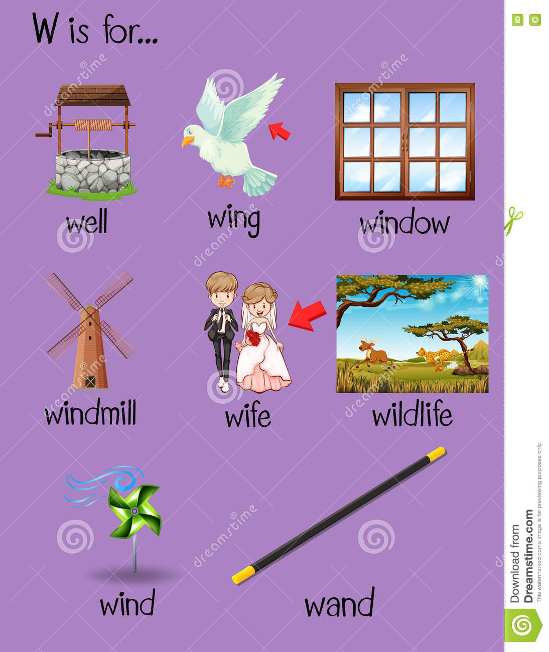 Different Words Begin With Letter W Stock Vector   Illustration of