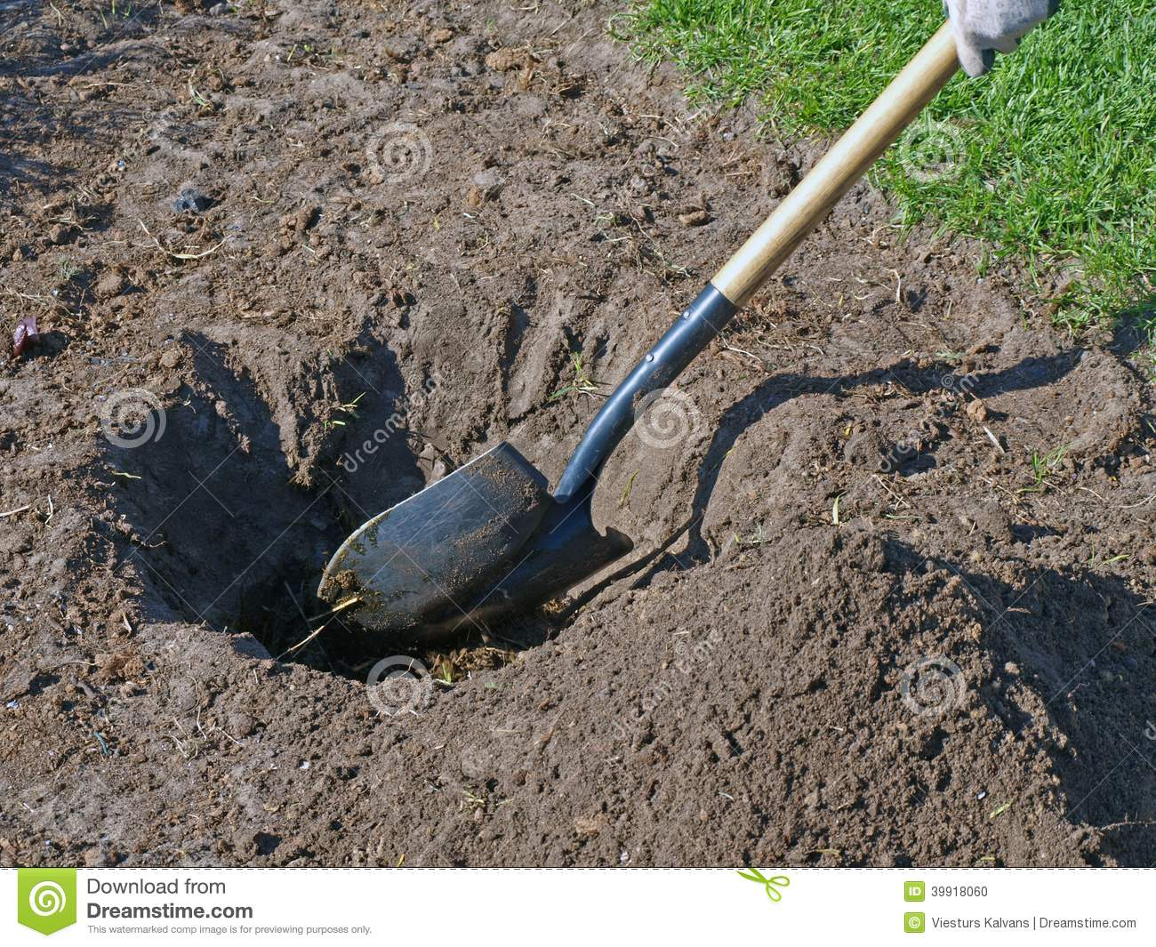 to dig a hole Digged definition, a simple past tense of dig1 see more.