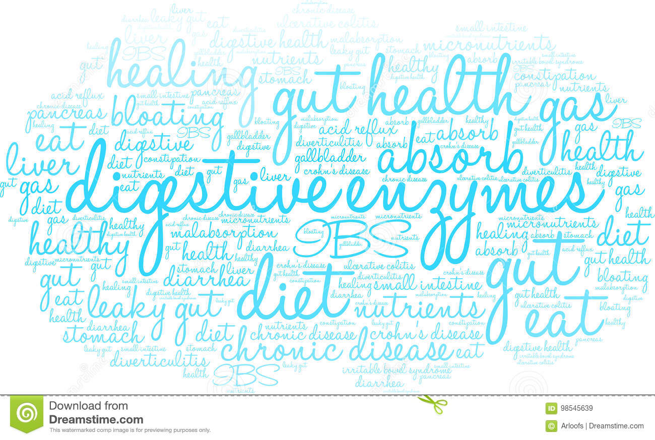 Digestive Enzymes Word Cloud Stock Illustration Illustration Of