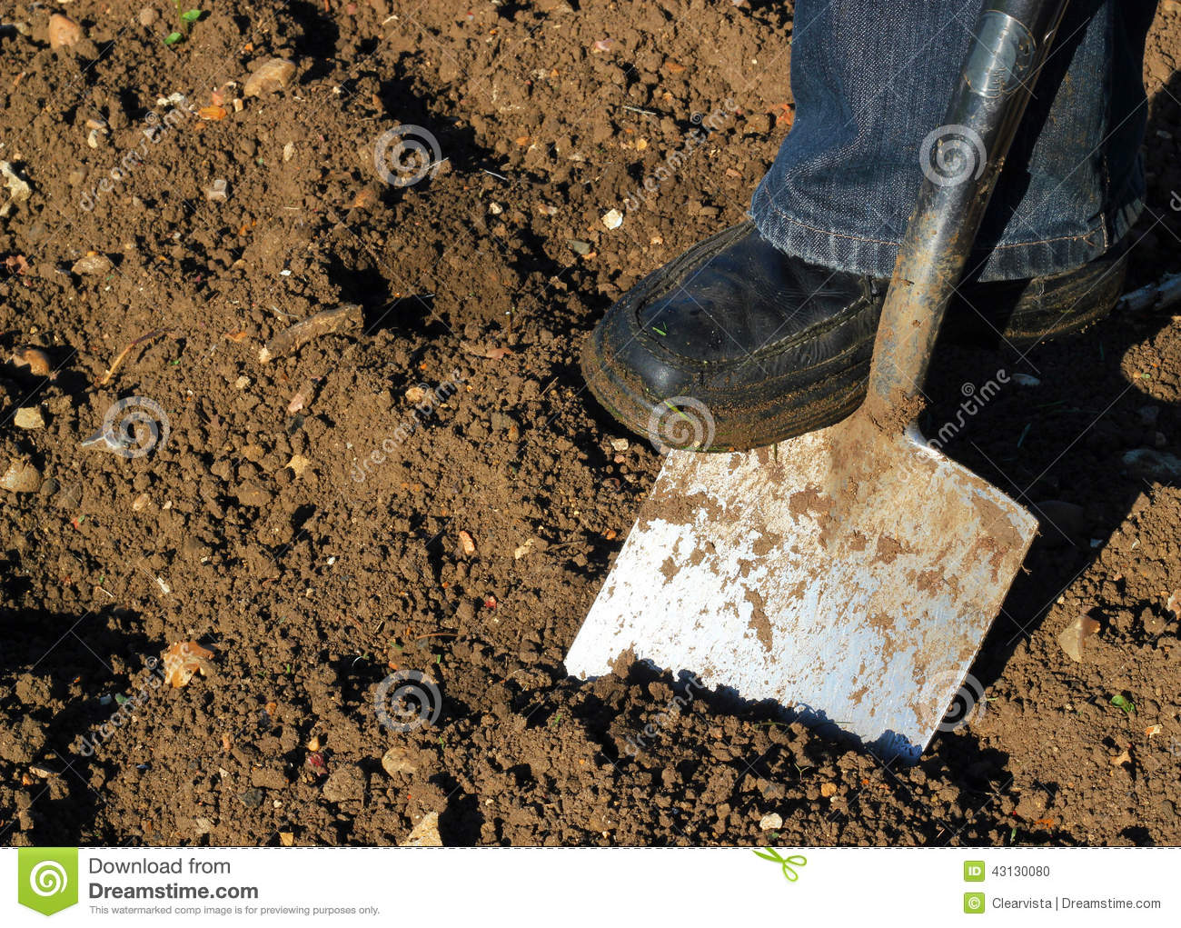 Digging with a spade stock photo image 43130080 for Digging ground dream meaning