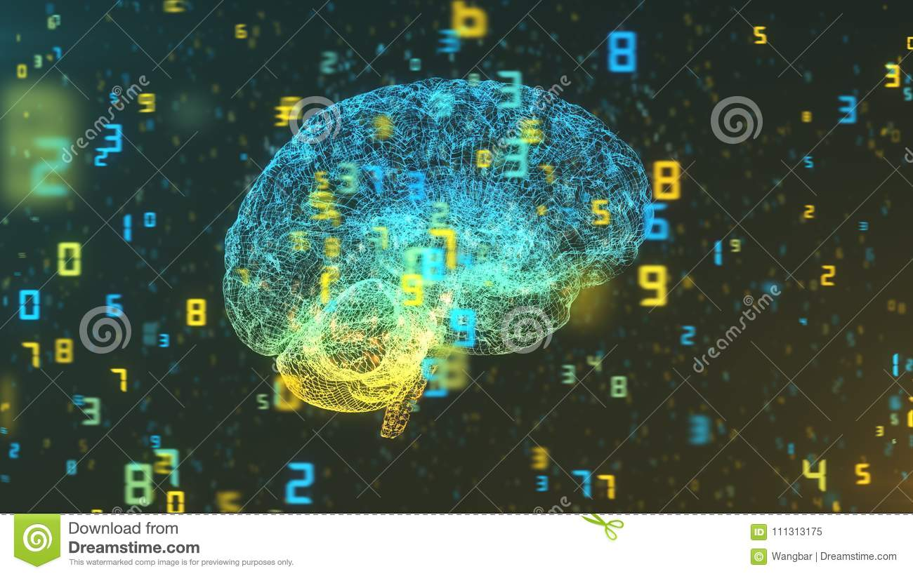Brain and numbers - Big Data and statistics - right view