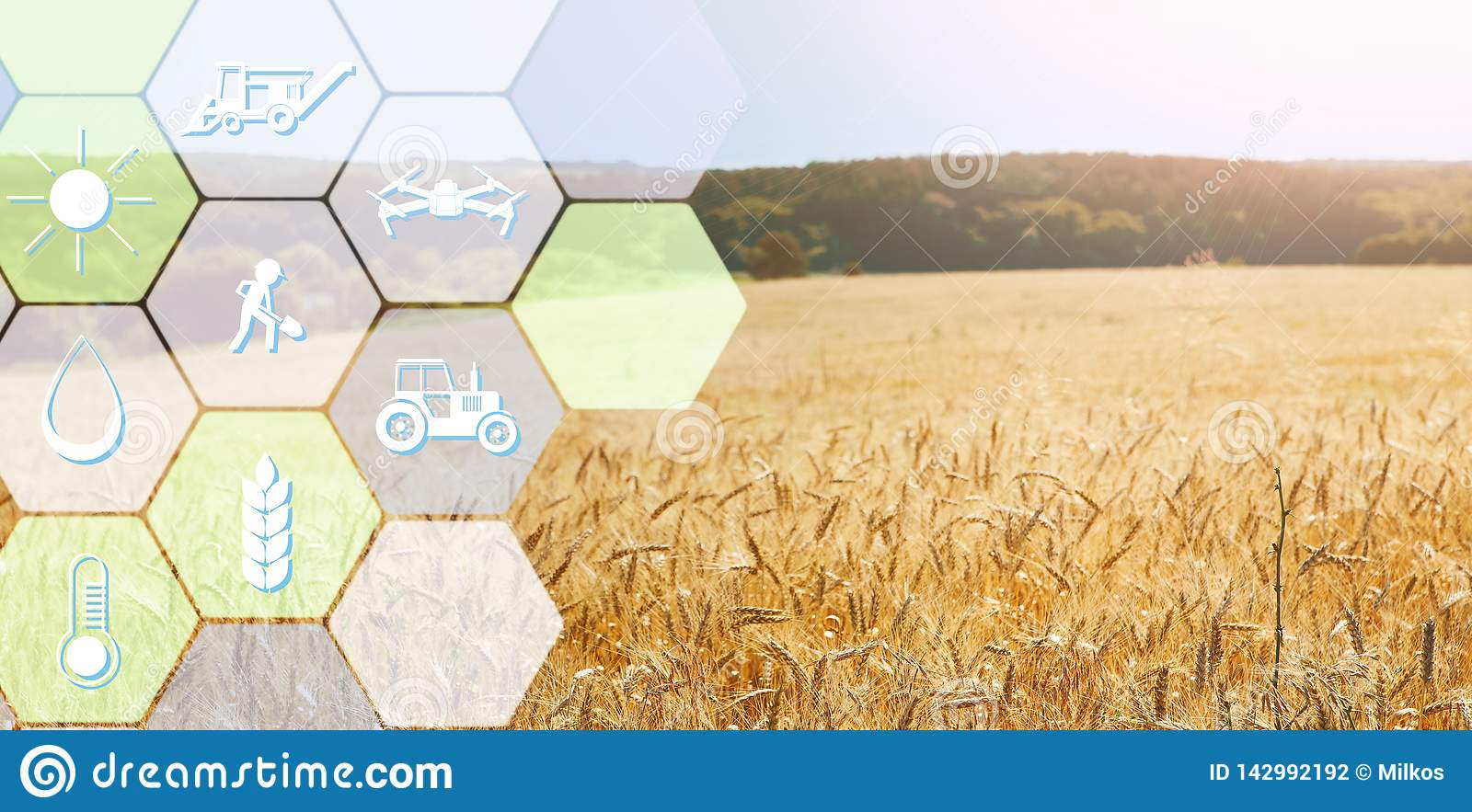 Digital Icons For Management And Monitoring Agriculture Stock Photo