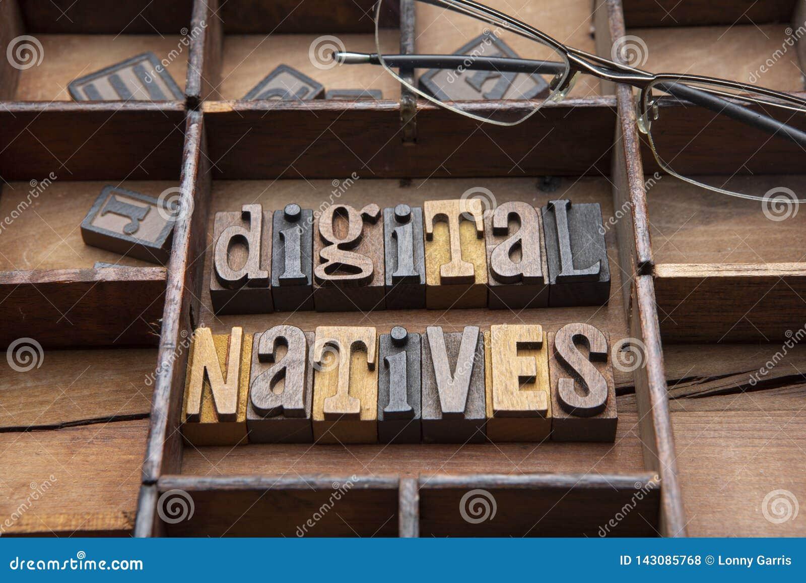 Digital infödingar