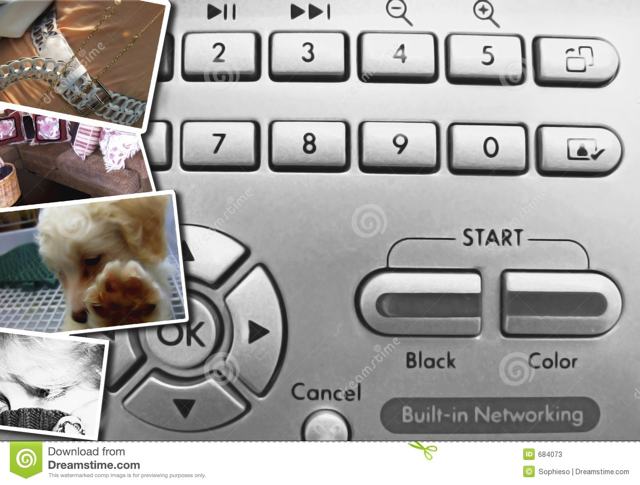 Digital Photo Control Buttons