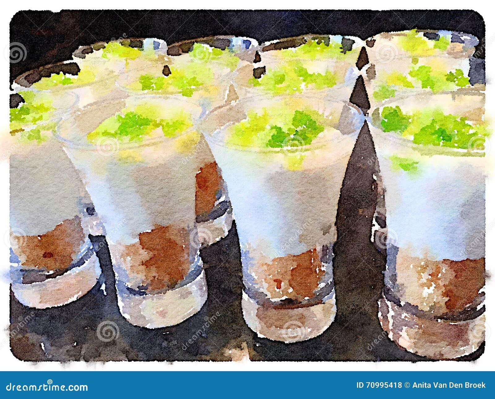 Digital vattenfärg av pajen för nyckel- limefrukt i en glass maträtt