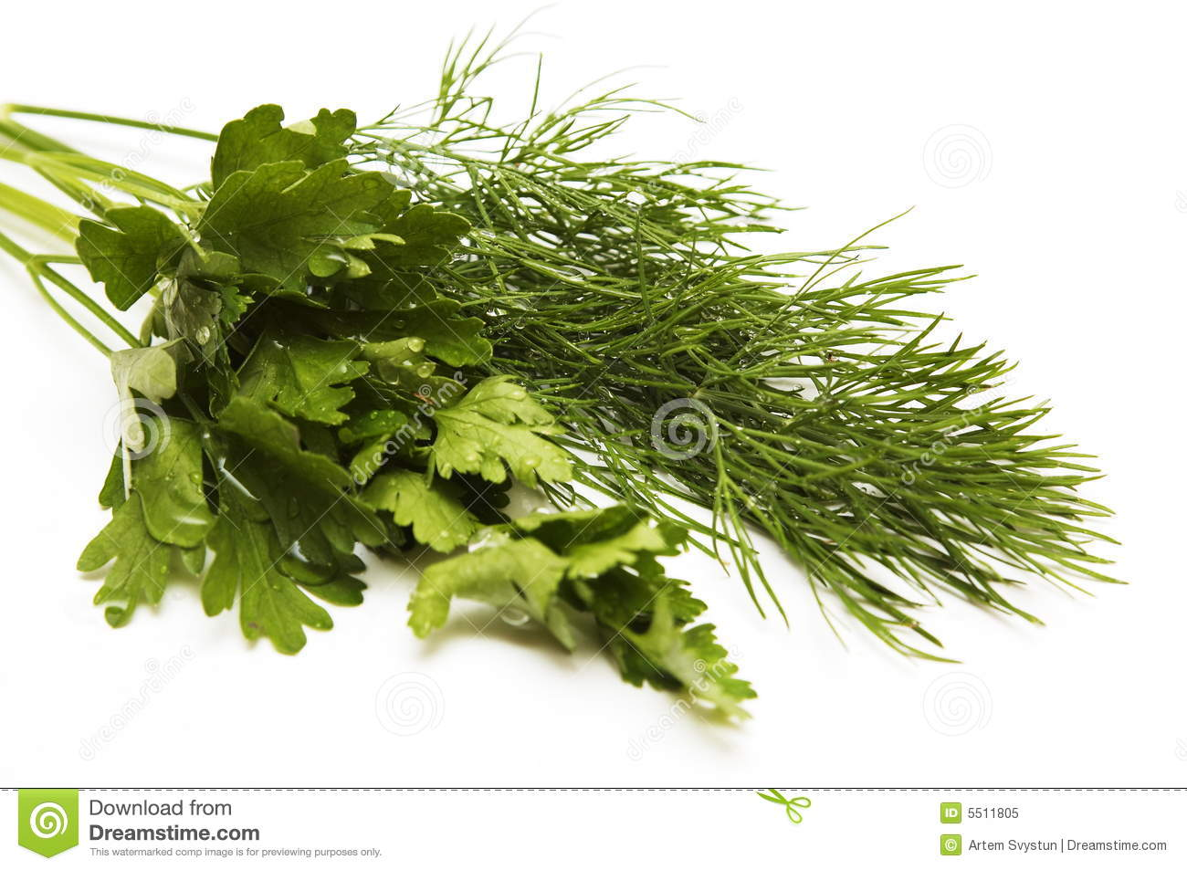 Dill and parsley for a salad