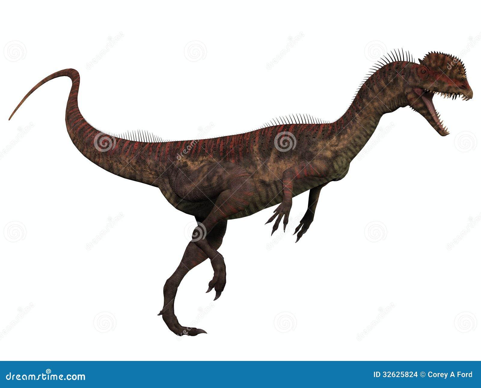 dilophosaurus on white stock images image 32625824