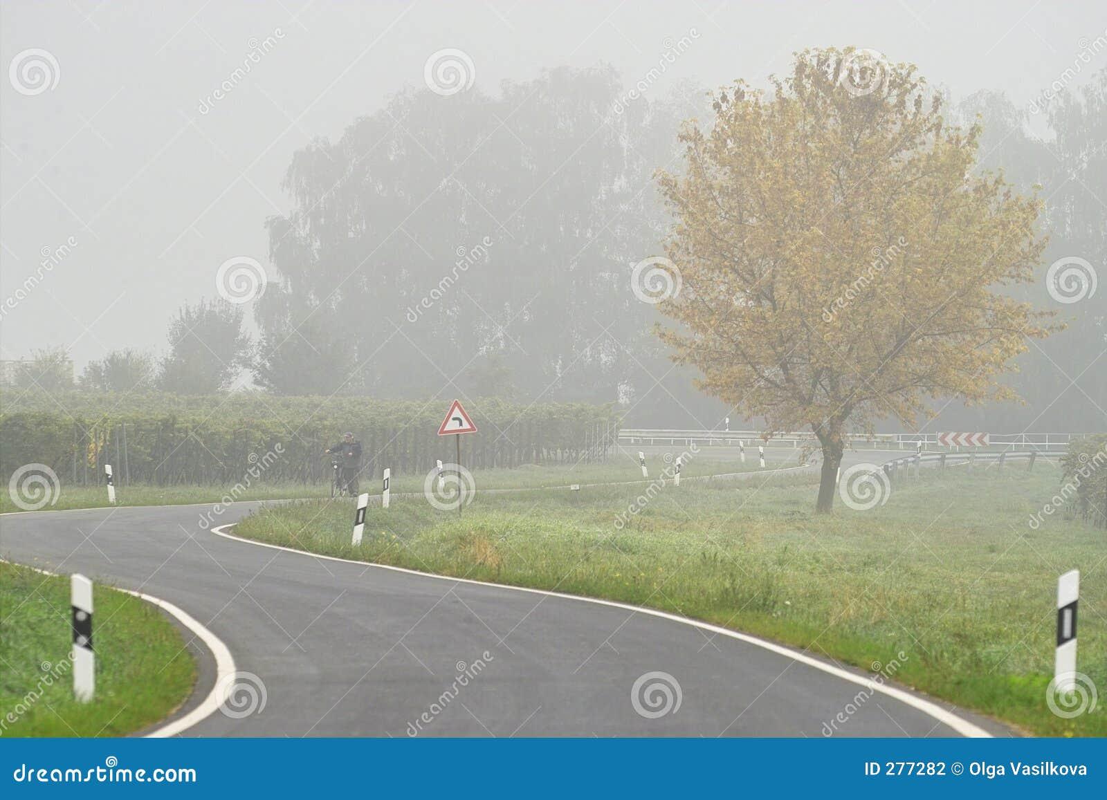 Dimma över vägen