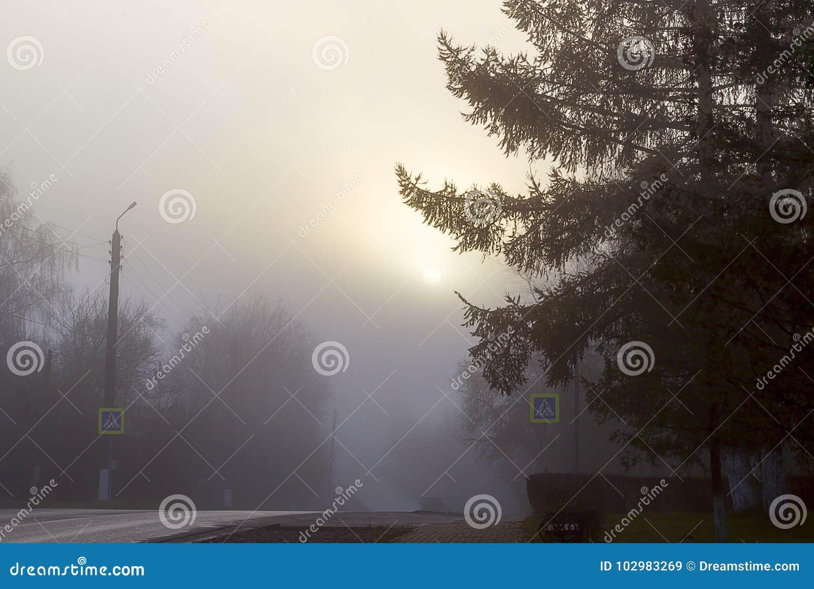 Dimma över vägen i staden