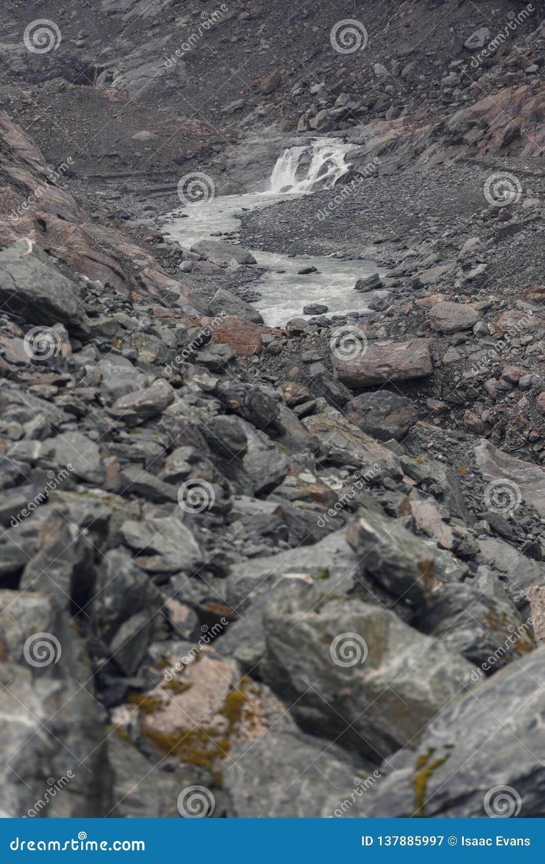 Dimmig dag i bergen nära Franz Josef Glacier