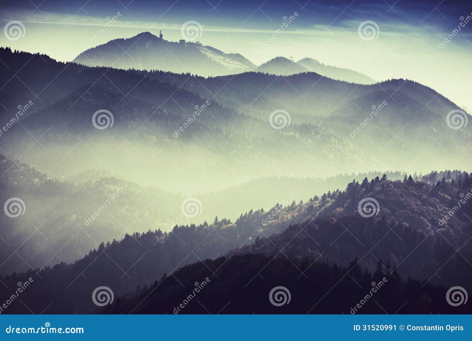 Dimmigt landskap