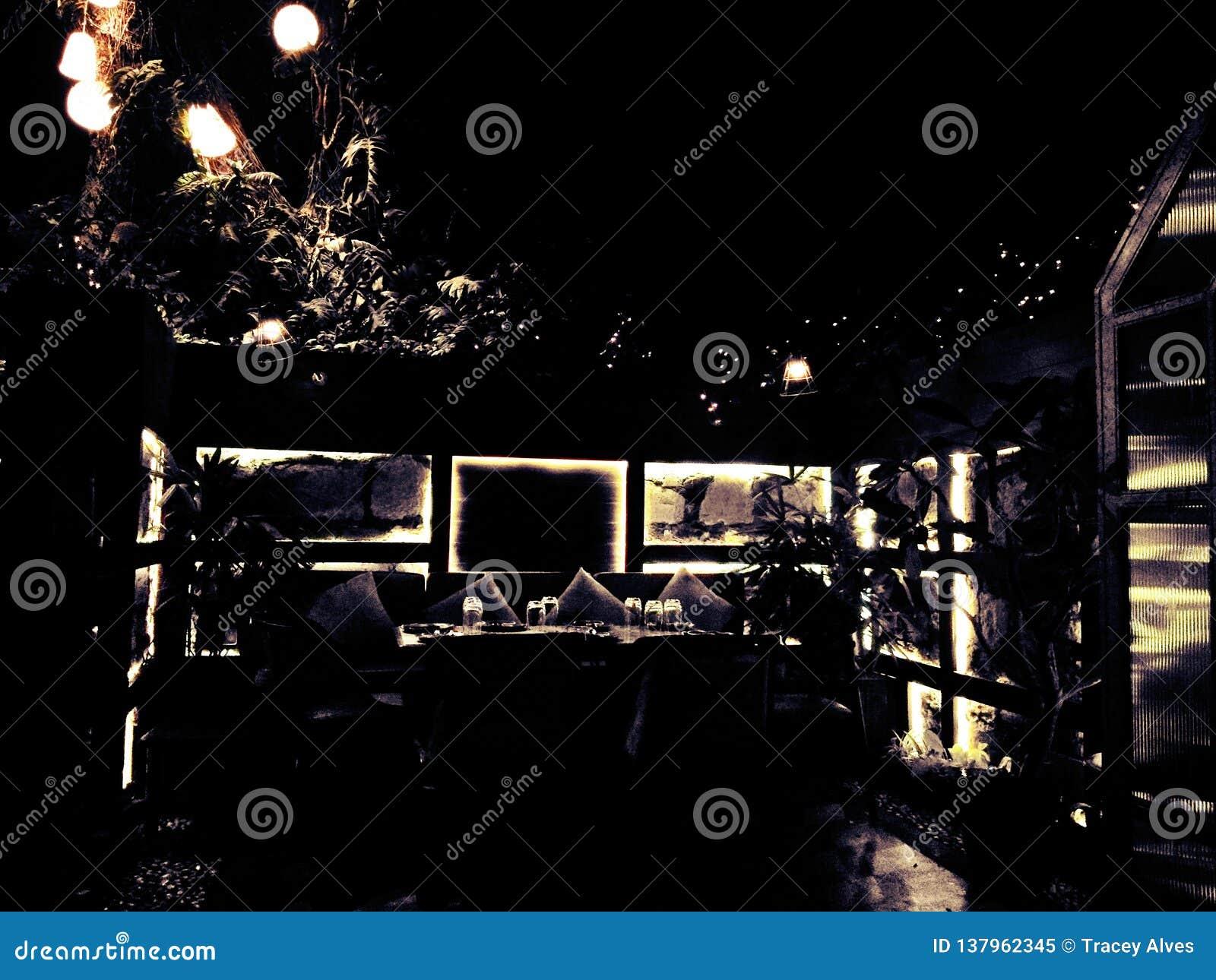 Dineer in dark
