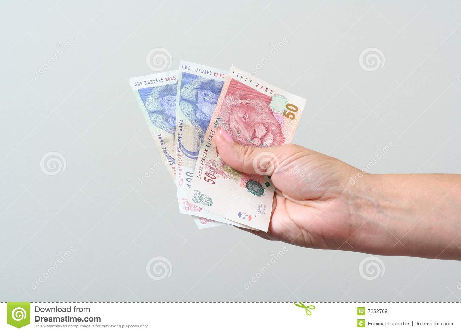Dinero en circulación surafricano