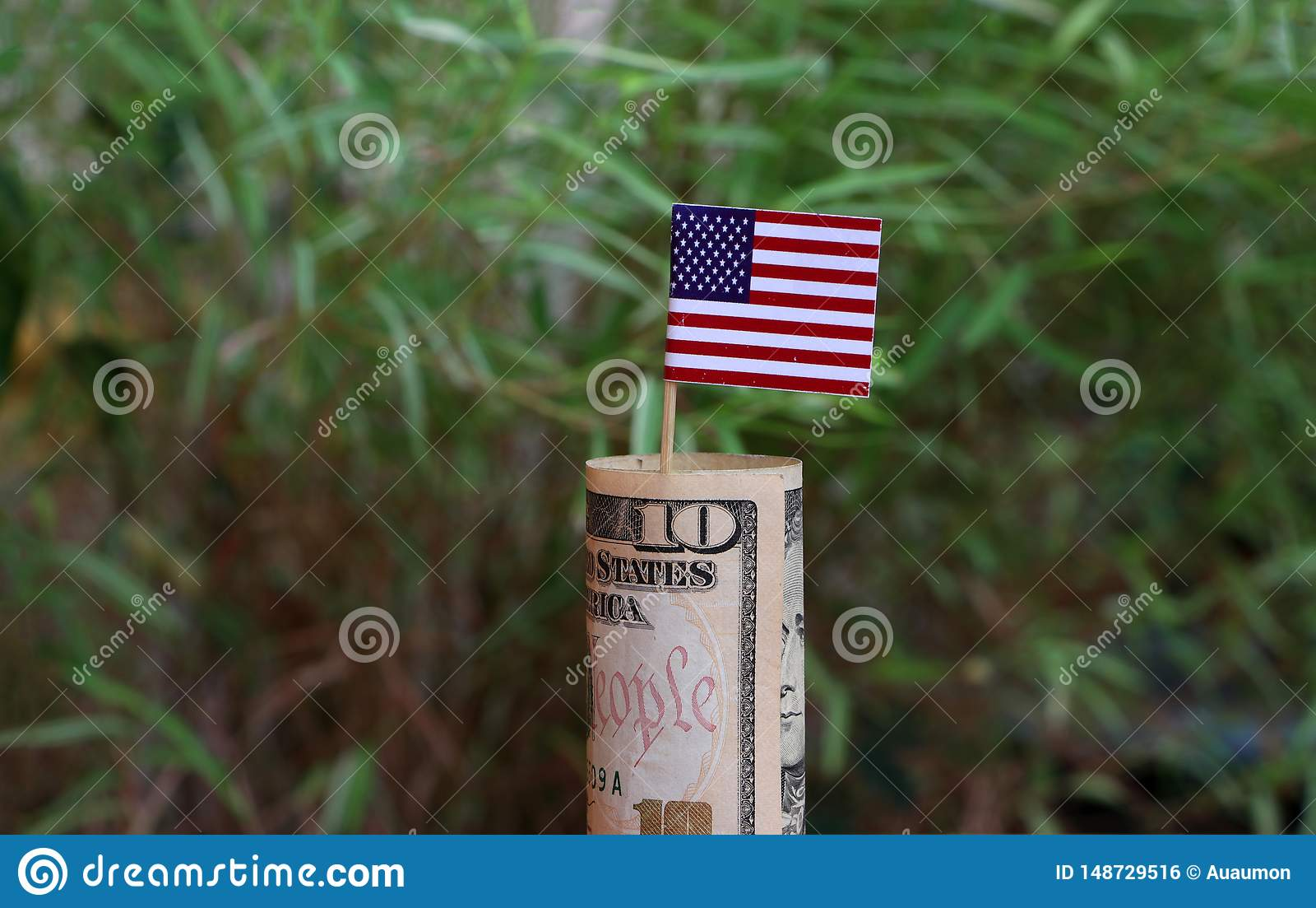 Dinero rodado del billete de banco diez d?lares americanos y palillos con la mini bandera de Am?rica en fondo verde de la natural