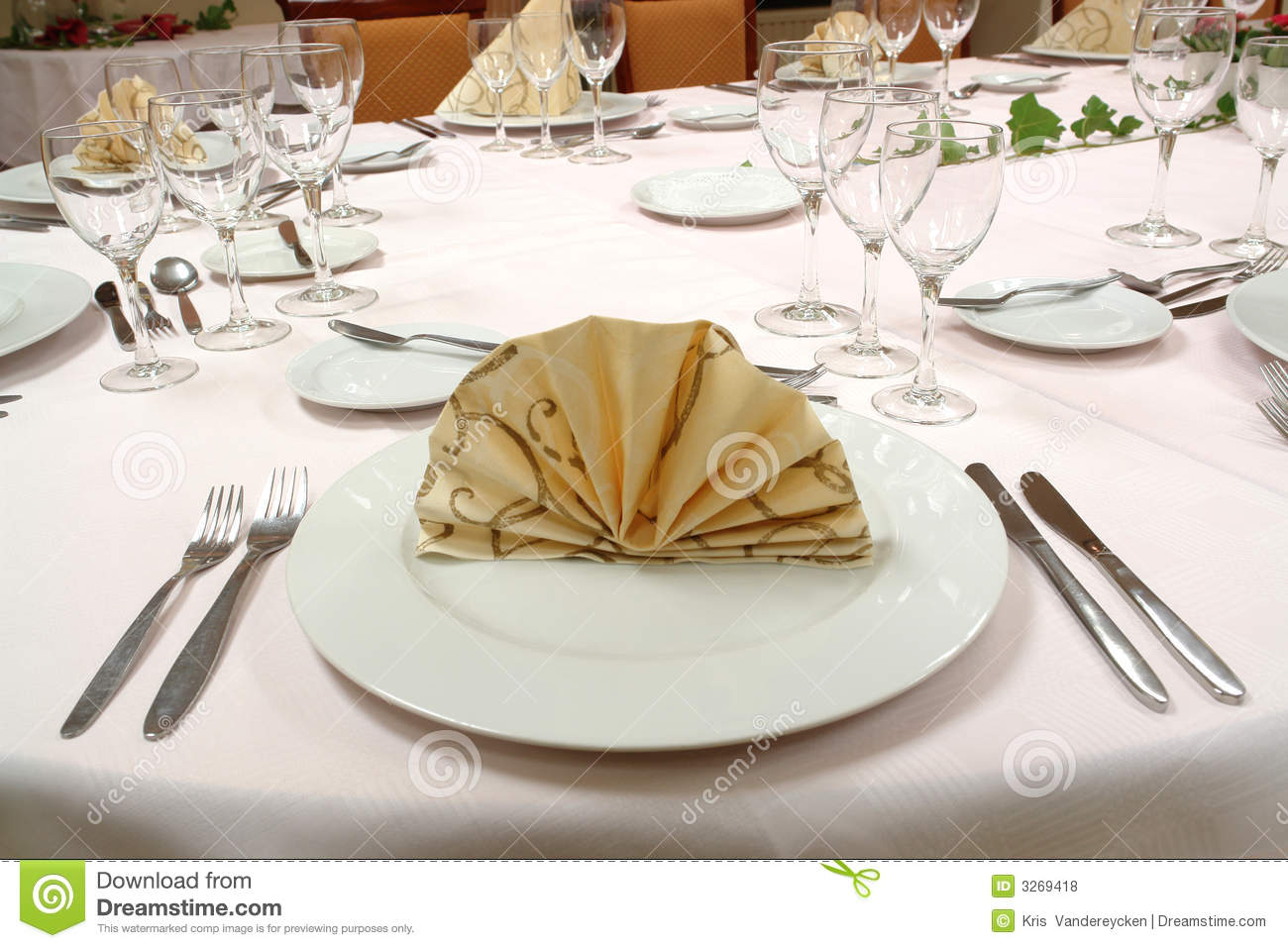 Dinner table setting stock photo image of plants couvert Dinner table setting pictures