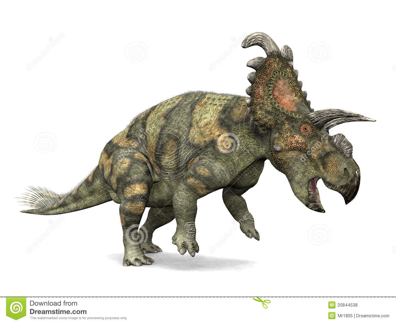 Dinosaur Albertaceratops Royalty Free Stock Photos Image