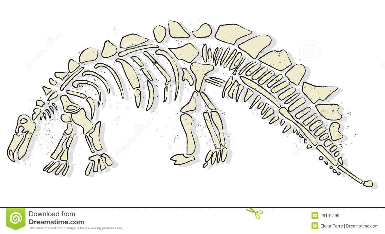 Dinosaur Bones Royalty Free Stock Images - Image: 29101299