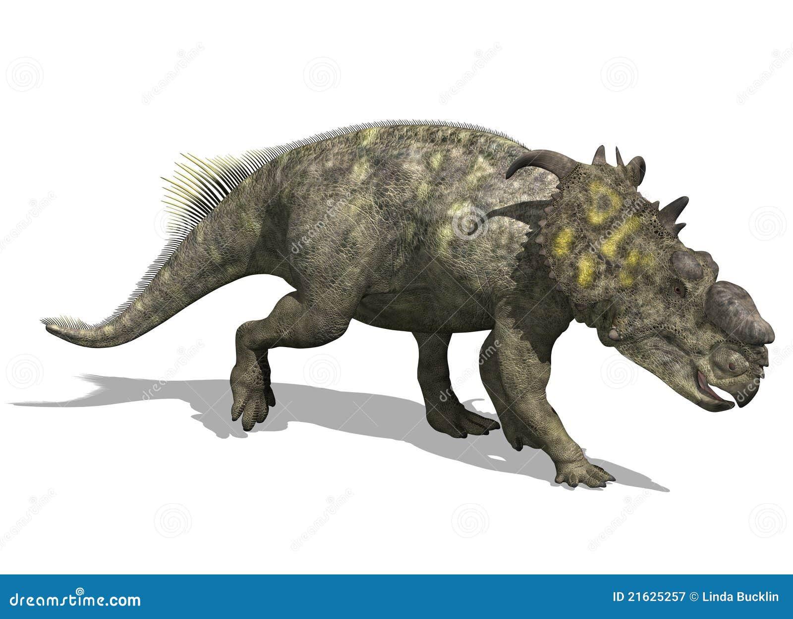 Dinosaur de Pachyrhinosaurus