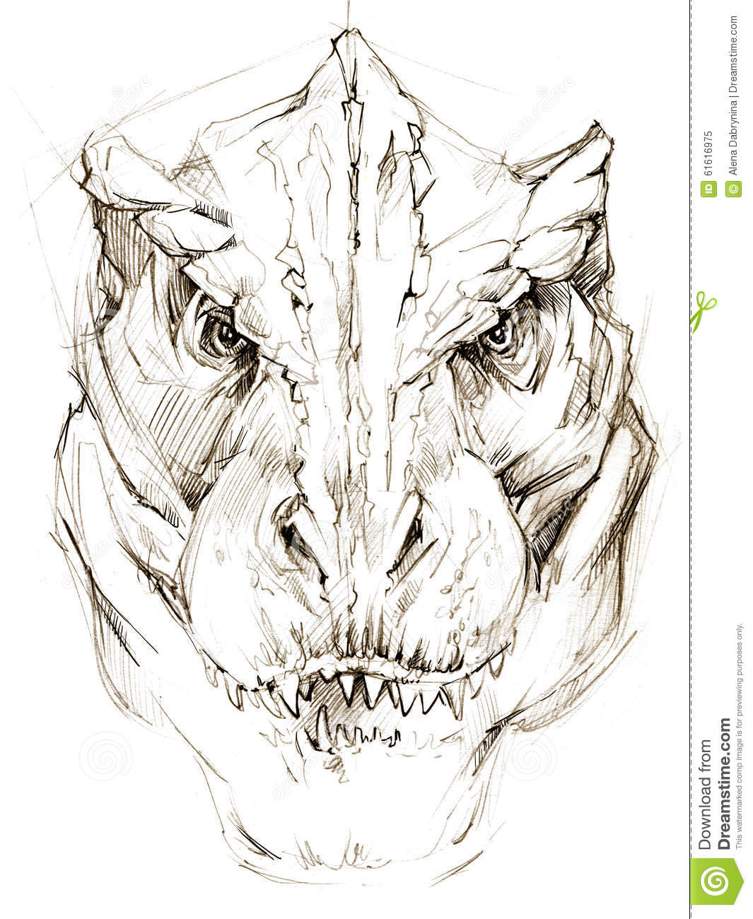 Image of: Skeleton Dinosaur Dinosaur Drawing Pencil Sketch Ancient Dinosaur Extinct Animal Illustration Dinosaur Sketch Background Educationcoms Dinosaur Dinosaur Drawing Pencil Sketch Stock Illustration