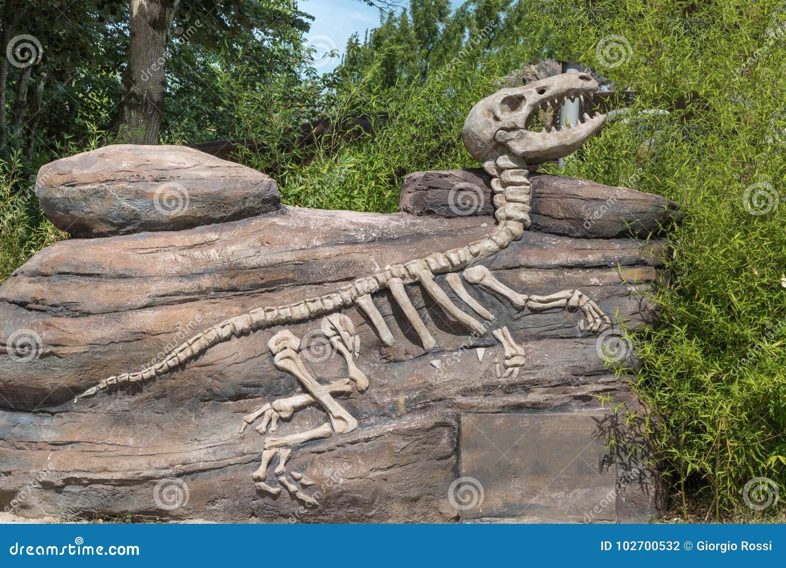 Dinosaur Fossil di modello dentro un parco in Italia