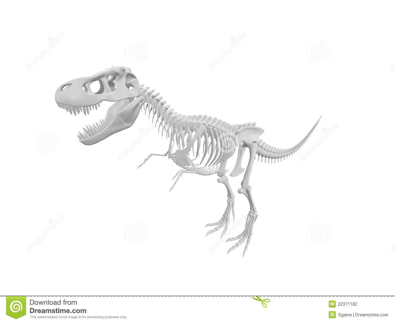 dinosaur skeleton stock photography image 22371182