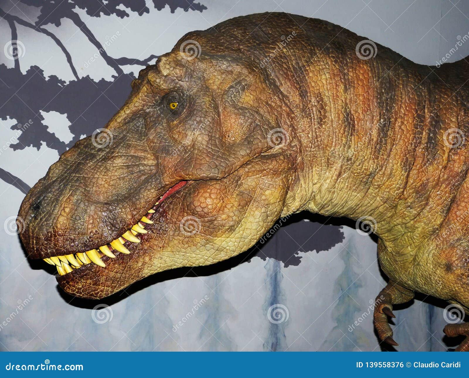 Dinosaur Tyrannosaurus Rex, T-Rex, huge head