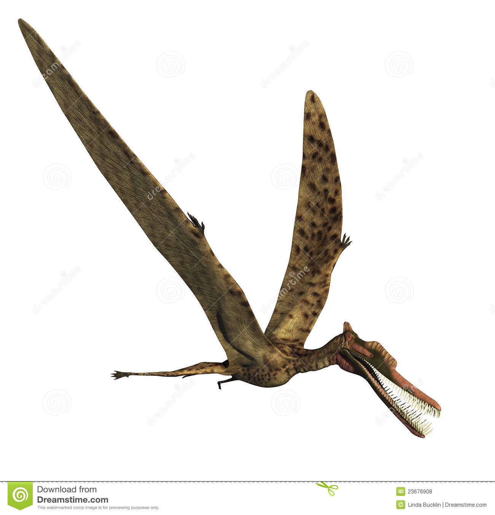 Dinosaura zhenyuanopterus