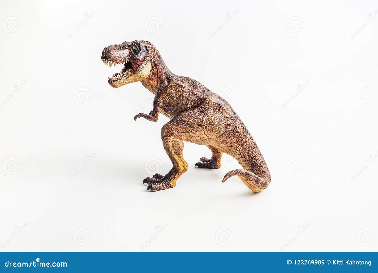 Dinosaure, T-rex, tyrannosaure sur le fond blanc