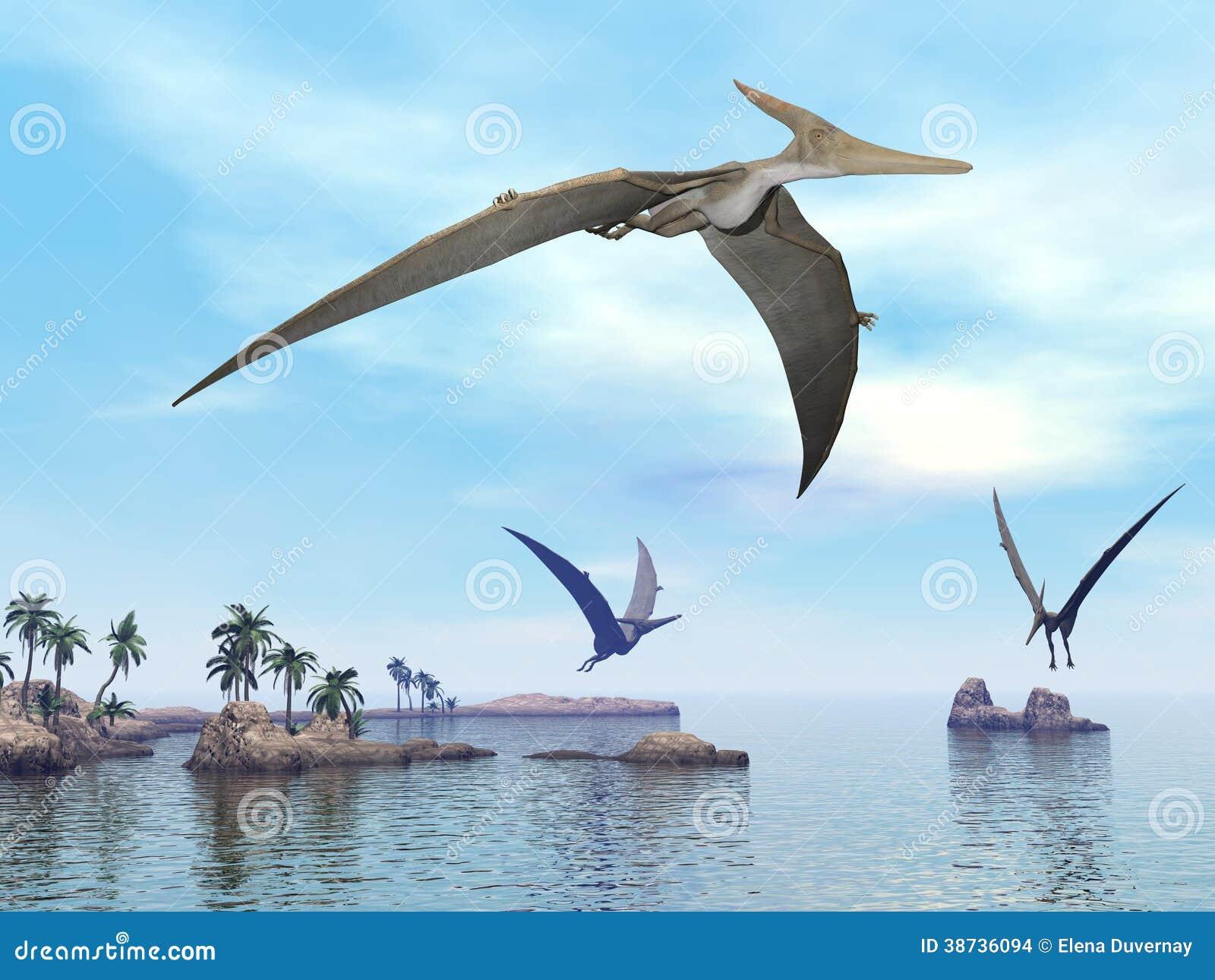 Dinosaures de pteranodon volant 3d rendent illustration - Dinosaur volant ...