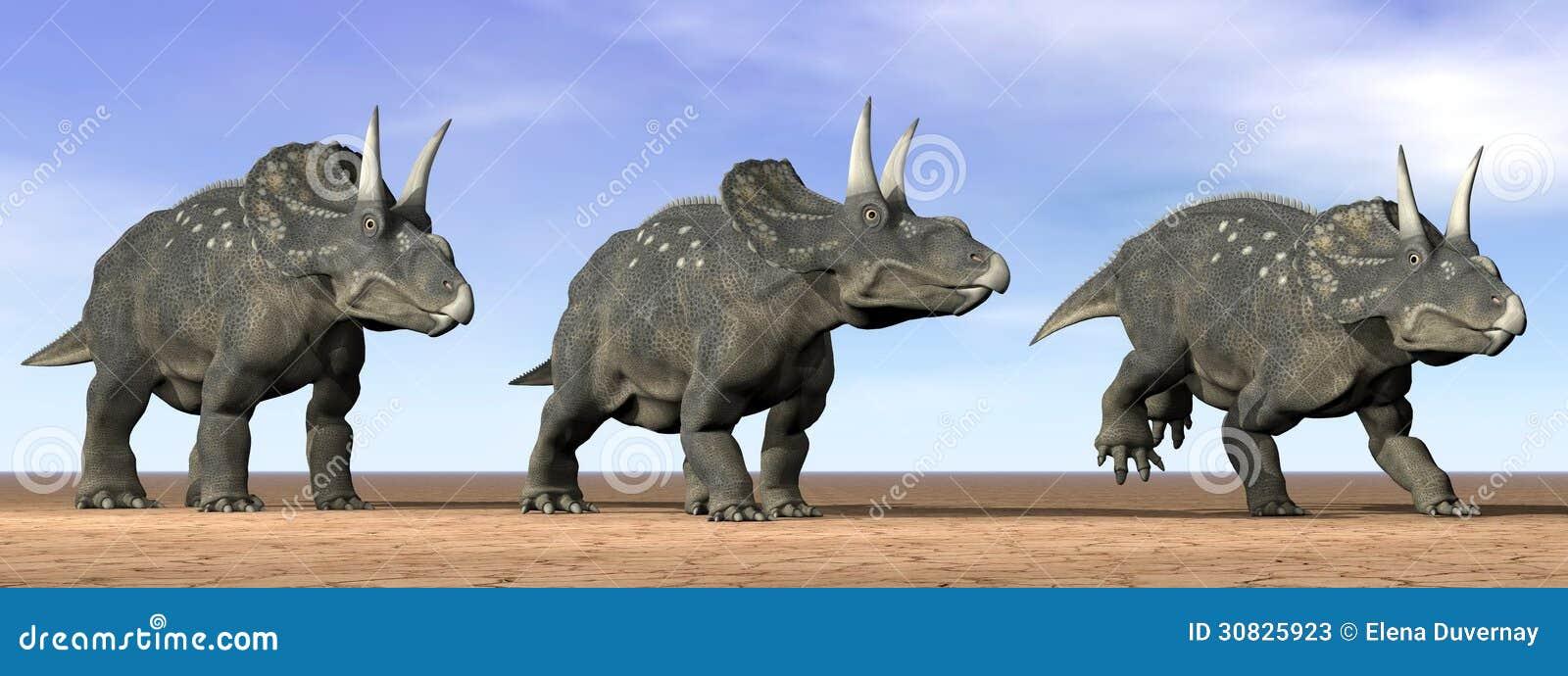Dinosauri di Diceratops nel deserto - 3D rendono