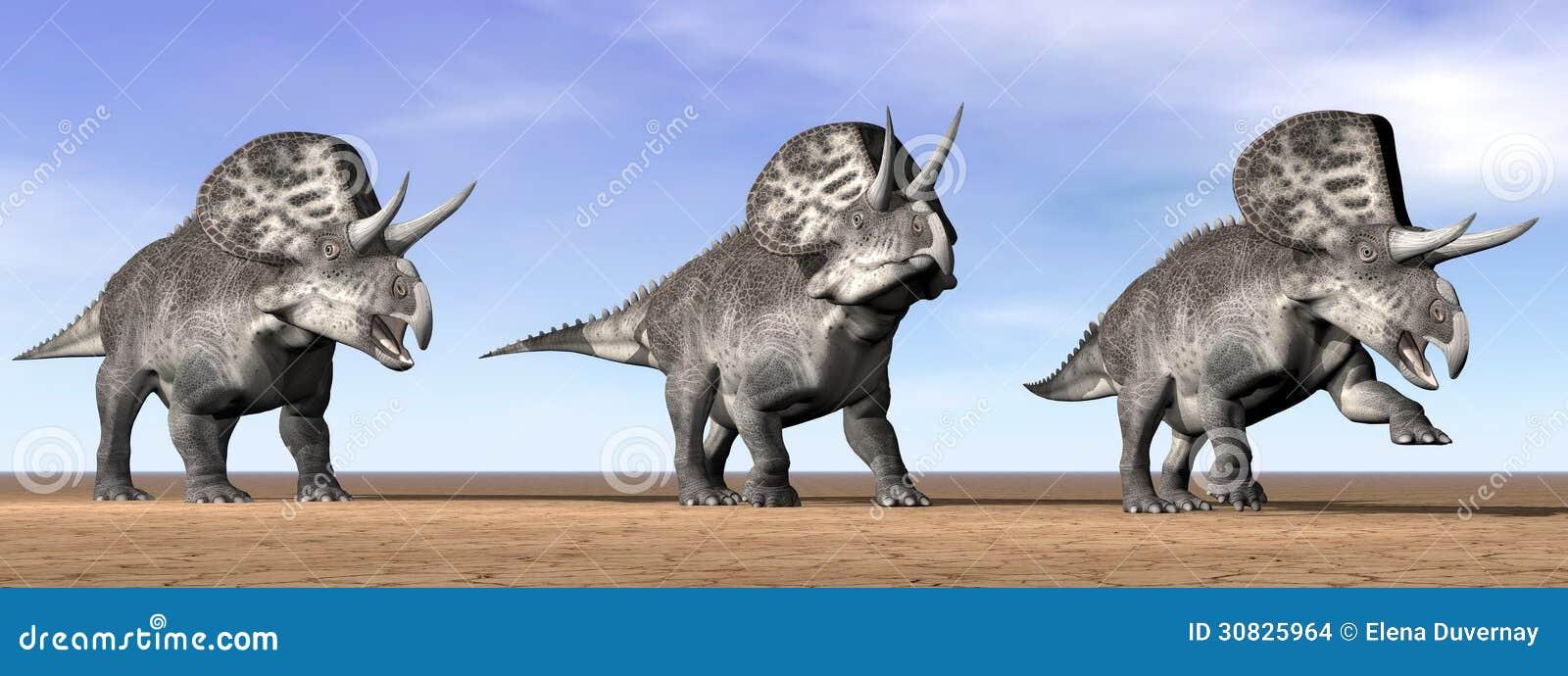 Dinosauri di Zuniceratops nel deserto - 3D rendono