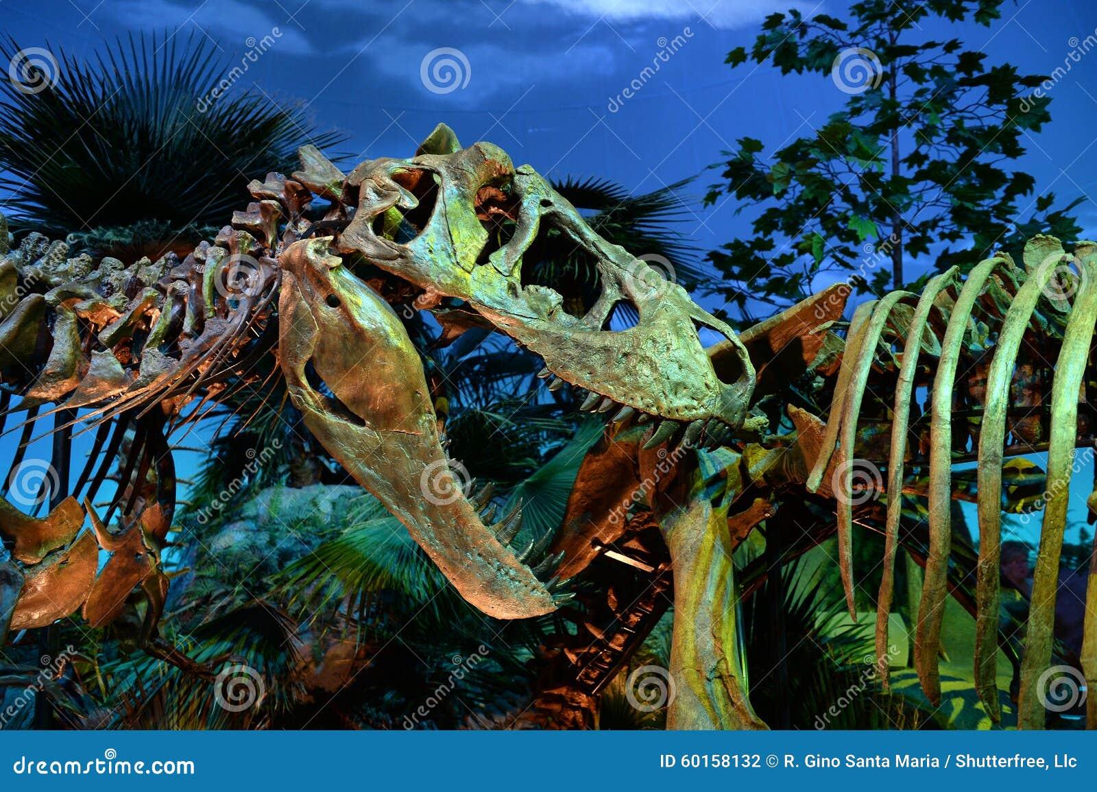 Dinosaurier Exibit am Museum der Indianapolis-Kinder