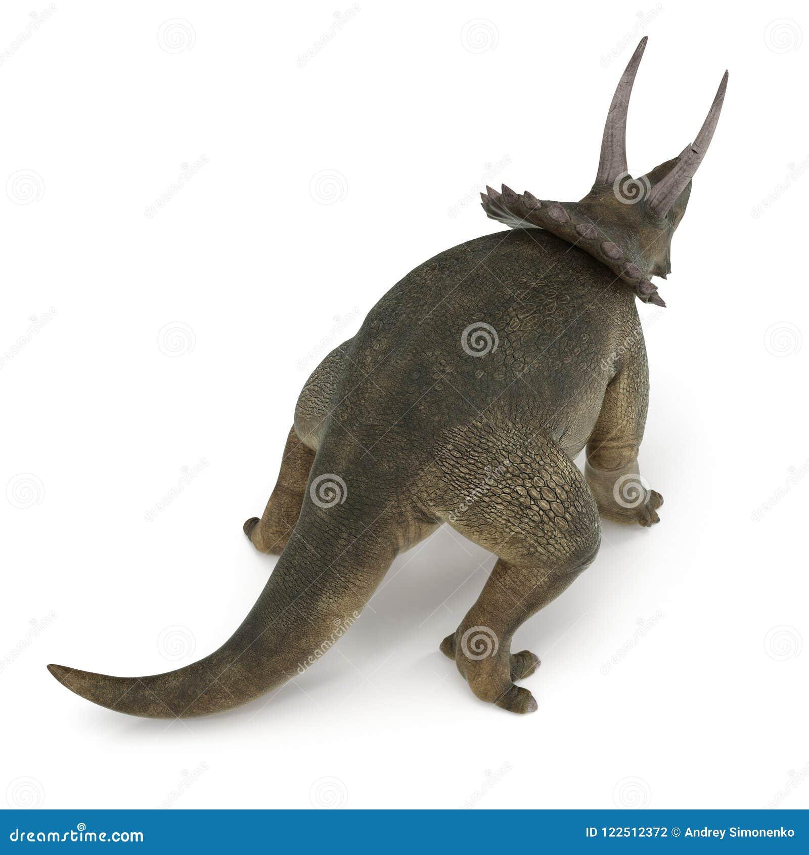 Dinosaurio del Triceratops en blanco ilustración 3D