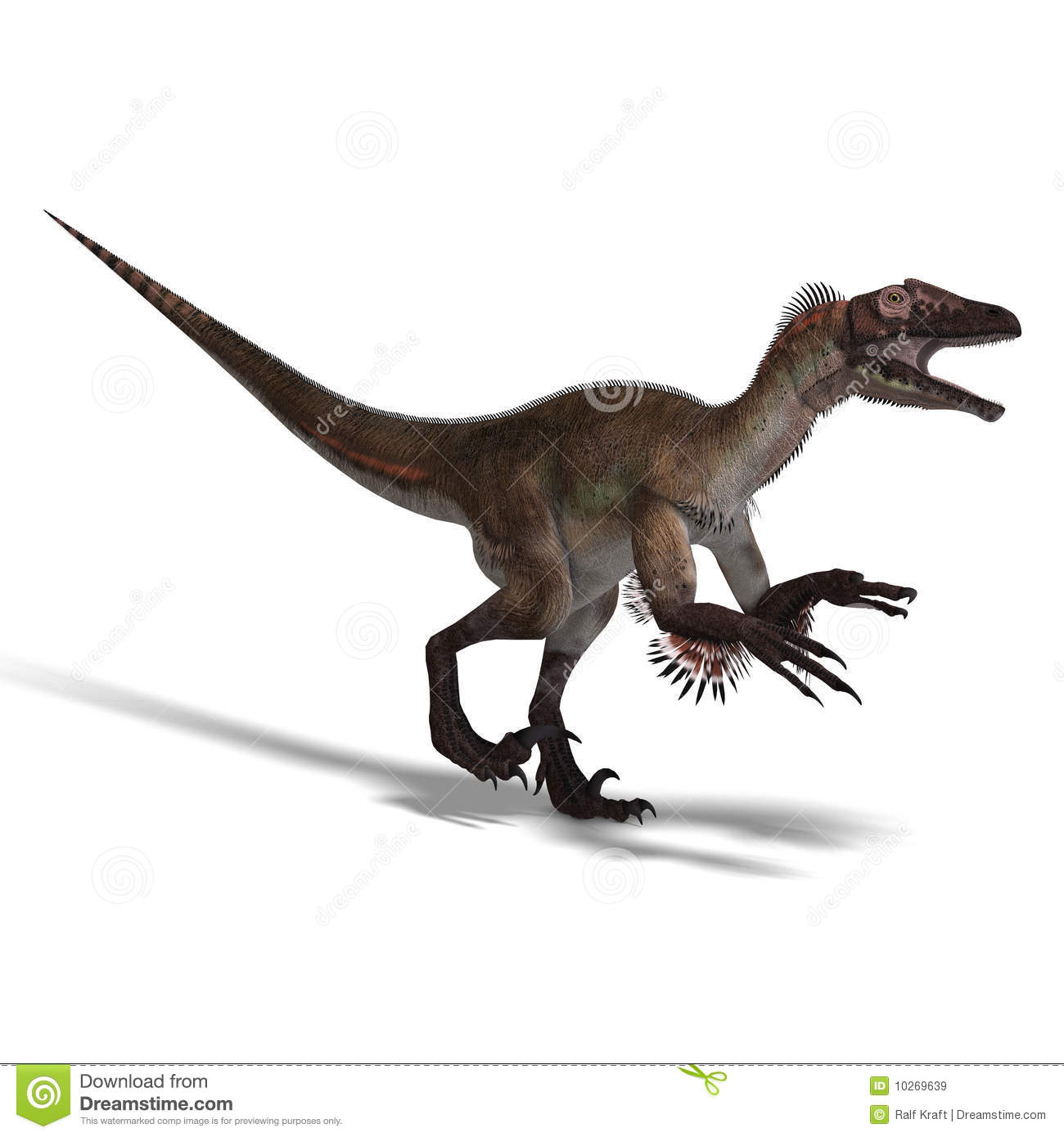 Dinosaurio Utahraptor Stock De Ilustracion Ilustracion De Utahraptor 10269639 Utahraptor (meaning utah thief) is a carnivorous dromaeosaurid from the barremian stage of the early cretaceous, living in what is now north america. dreamstime