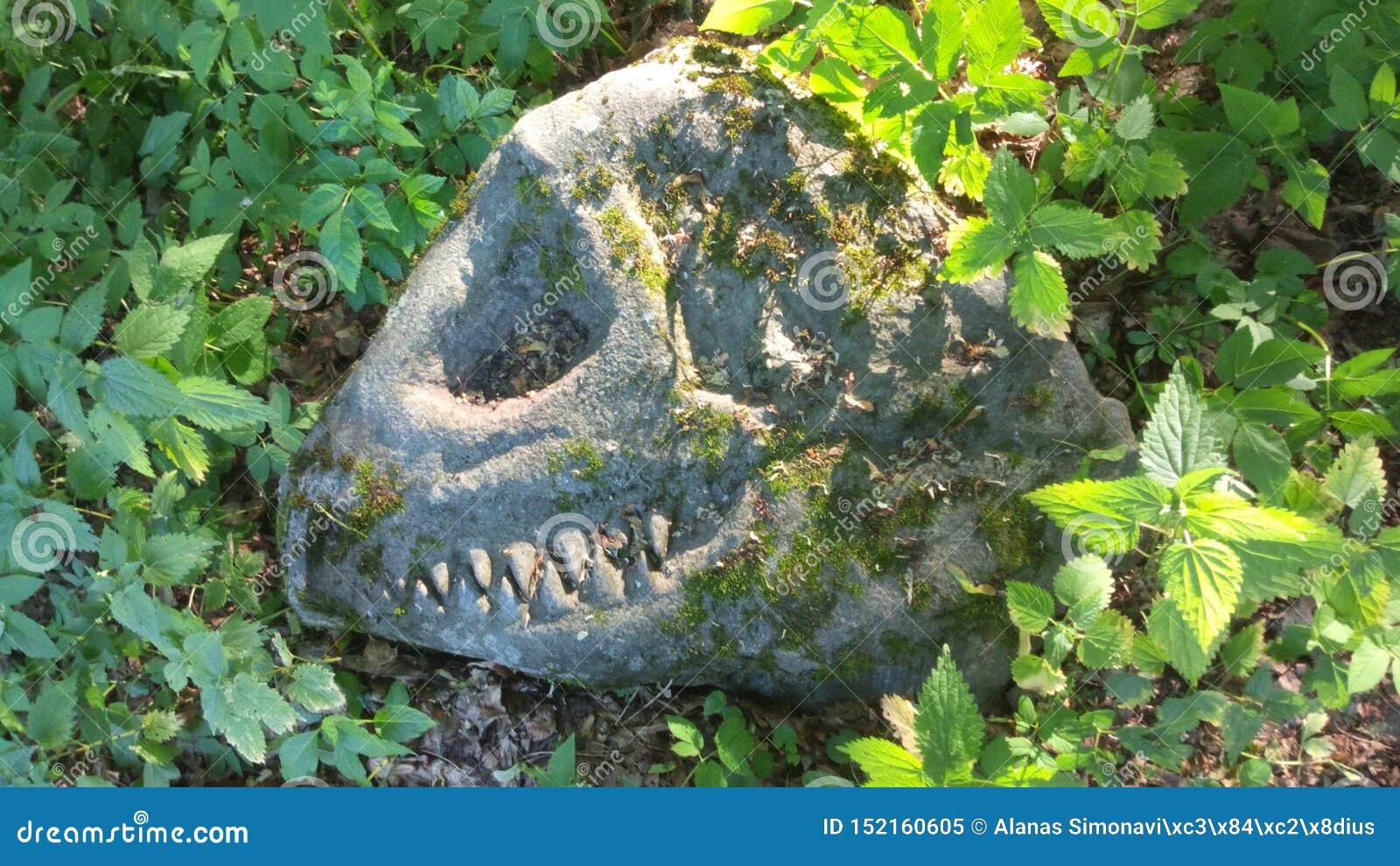 Dinosauro su roccia
