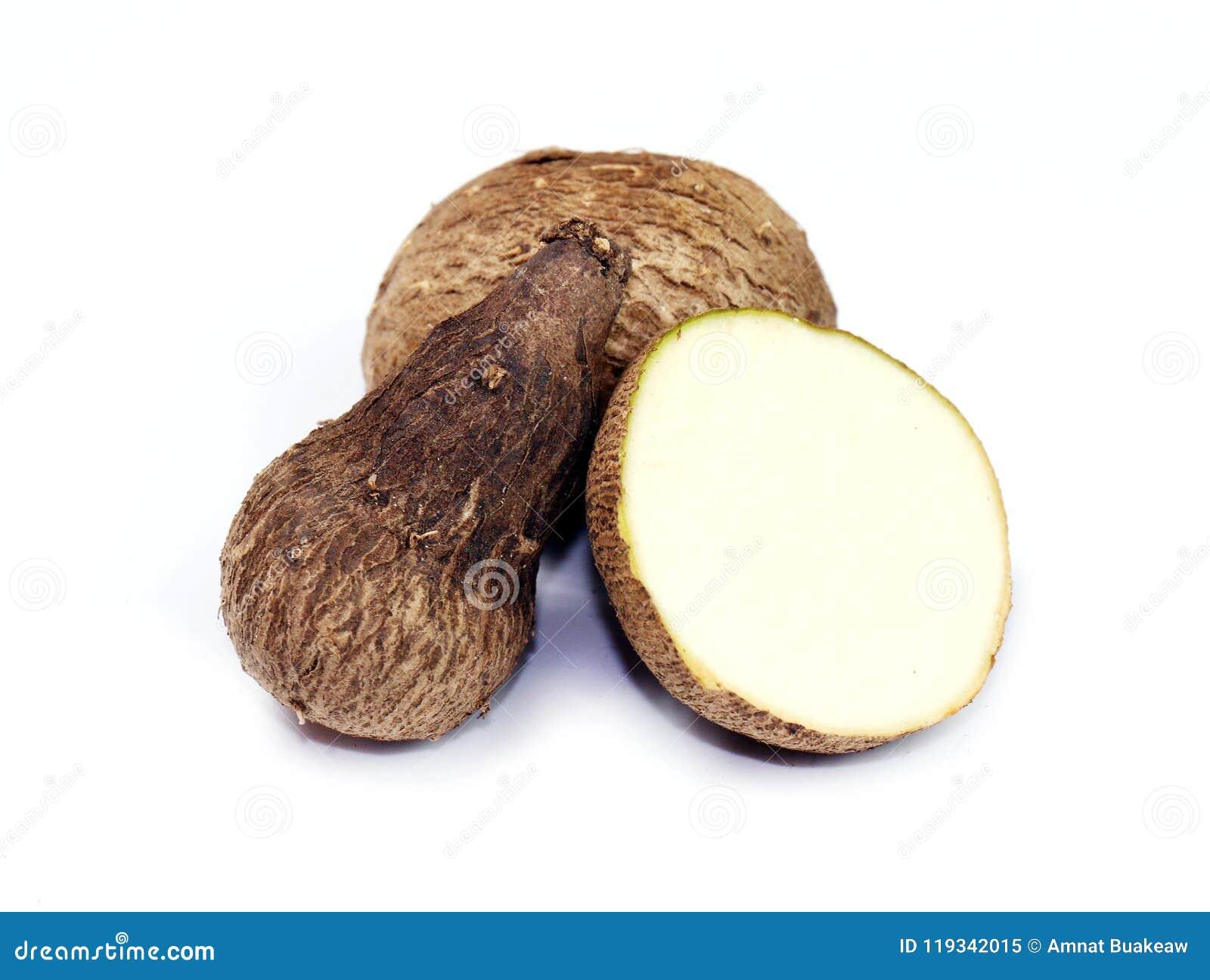 Dioscorea, Mun-Neb Thai word, Fresh Dioscorea tuck, Dioscorea slats root on white background, Rubeola fotografie