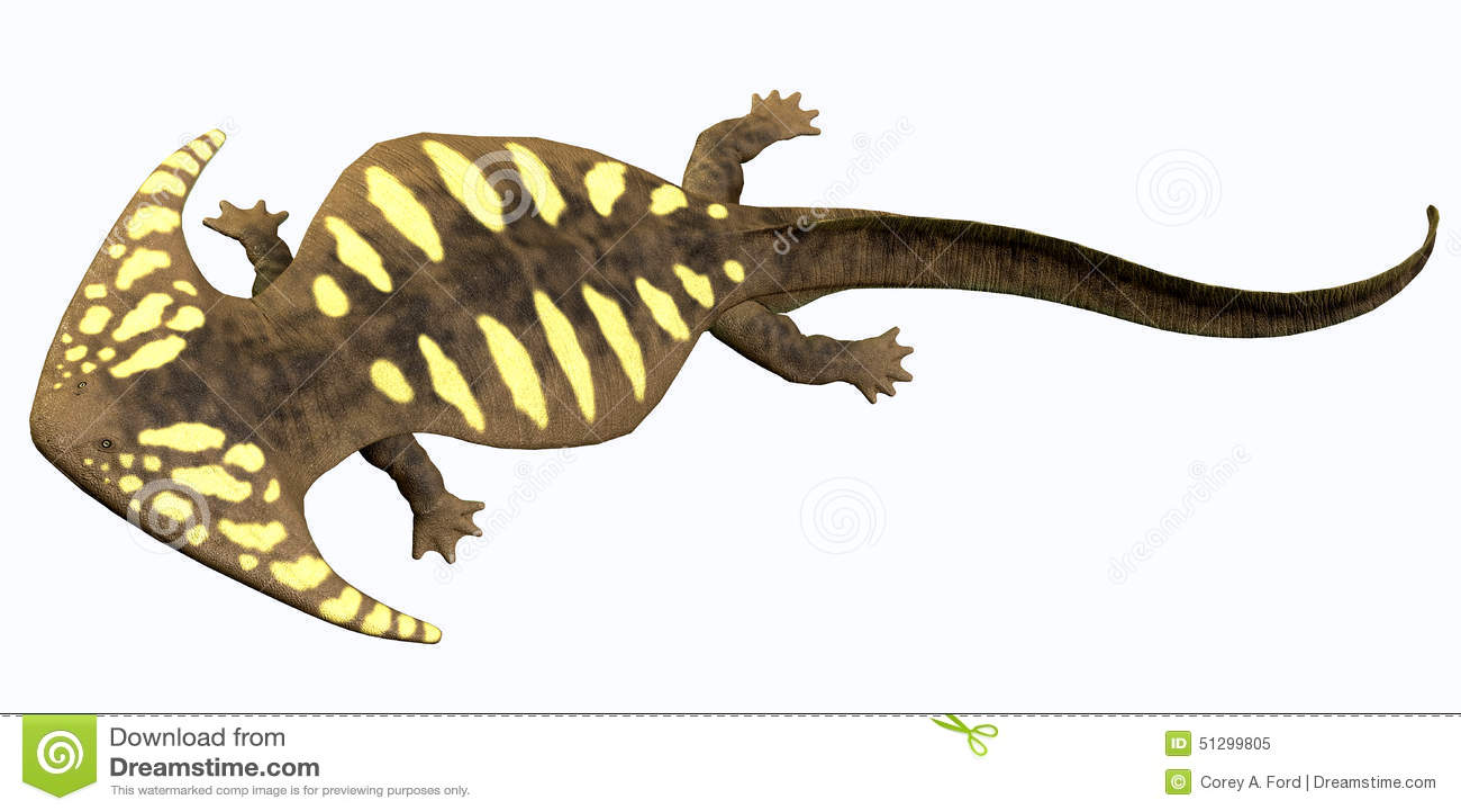 diplocaulus permian amphibian stock illustration