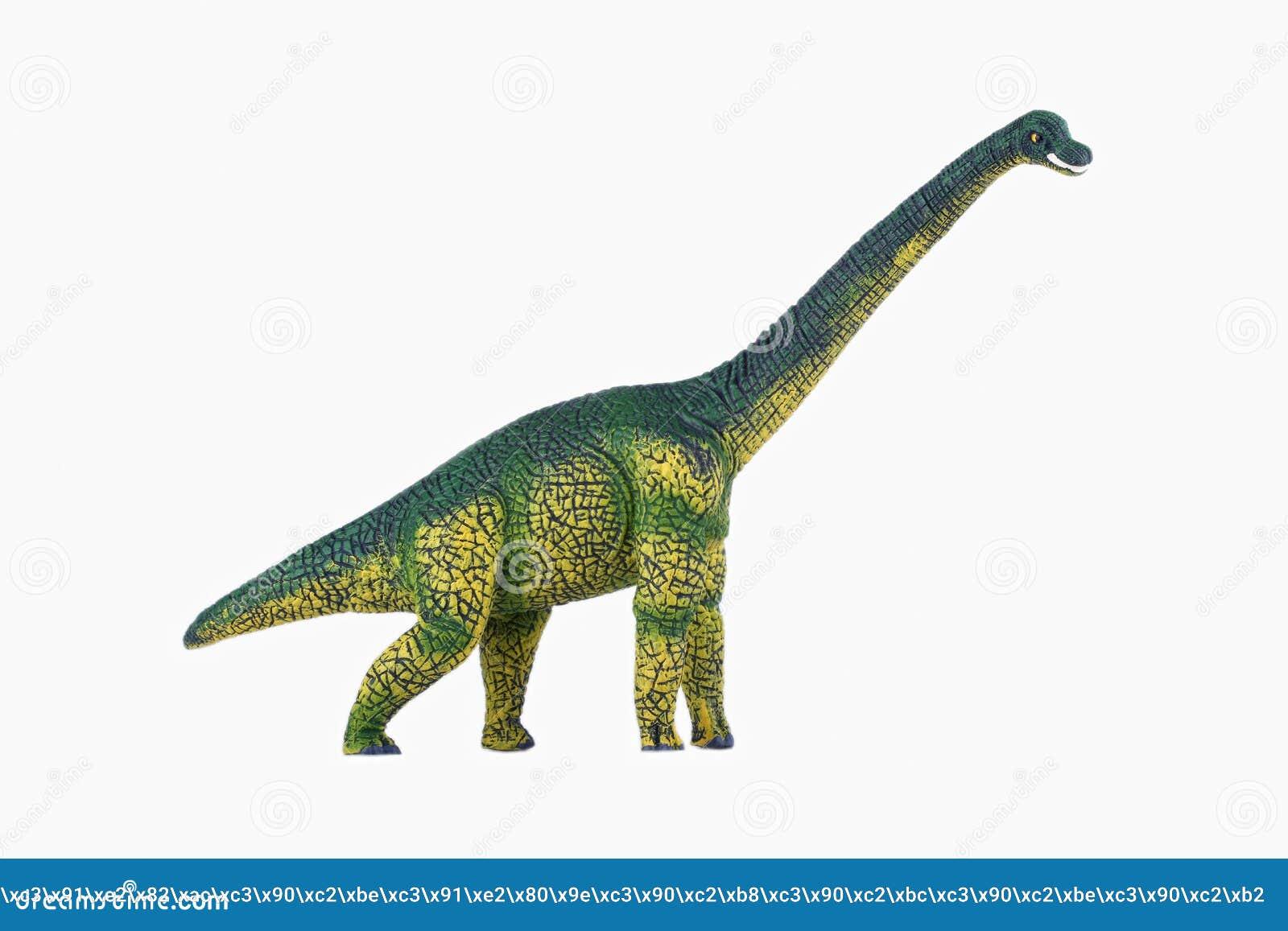 Diplodocus de dinosaure photo stock image 64047491 - Dinosaure diplodocus ...