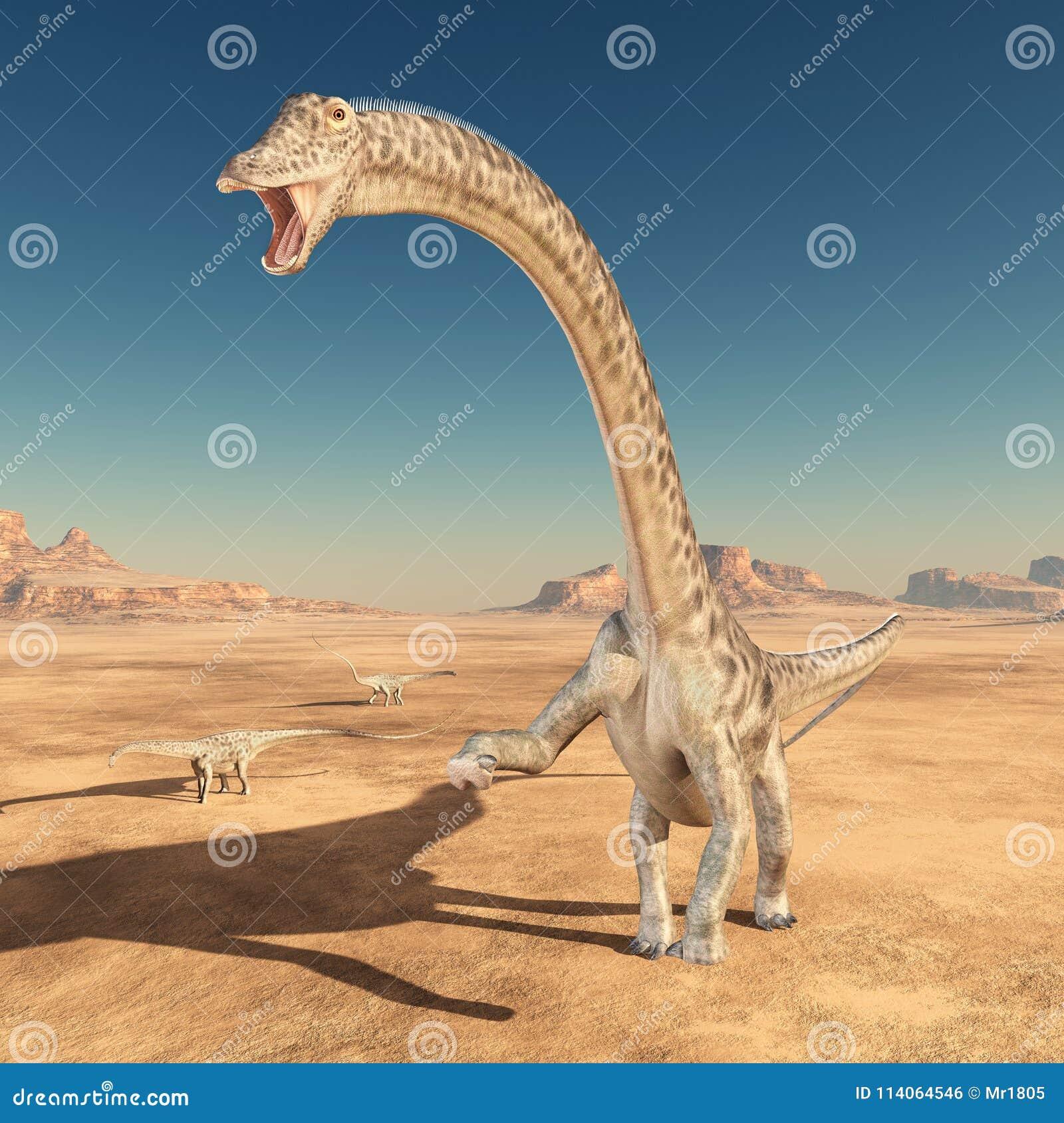 Diplodocus do dinossauro no deserto