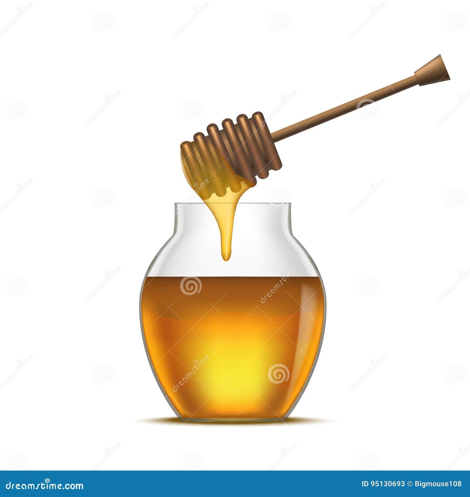 Dipper dettagliato realistico e miele di vetro del barattolo Vettore