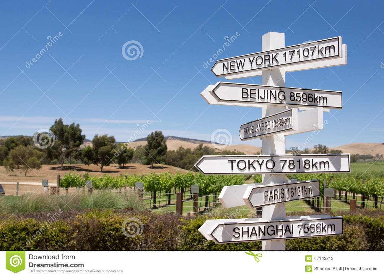 sign post to the world stock image image of north information